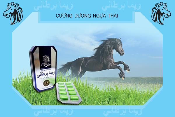 Cường Dương Ngựa Thái là sản phẩm đến từ Thái Lan