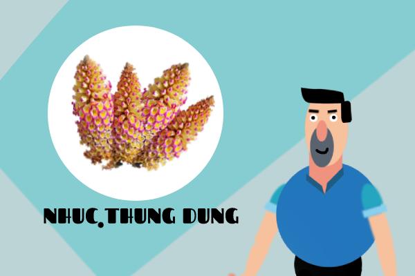 Nhục Thung Dung giúp chữa yếu sinh lý hiệu quả