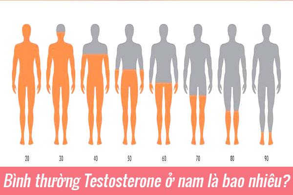 Bình thường Testosterone ở nam là bao nhiêu?