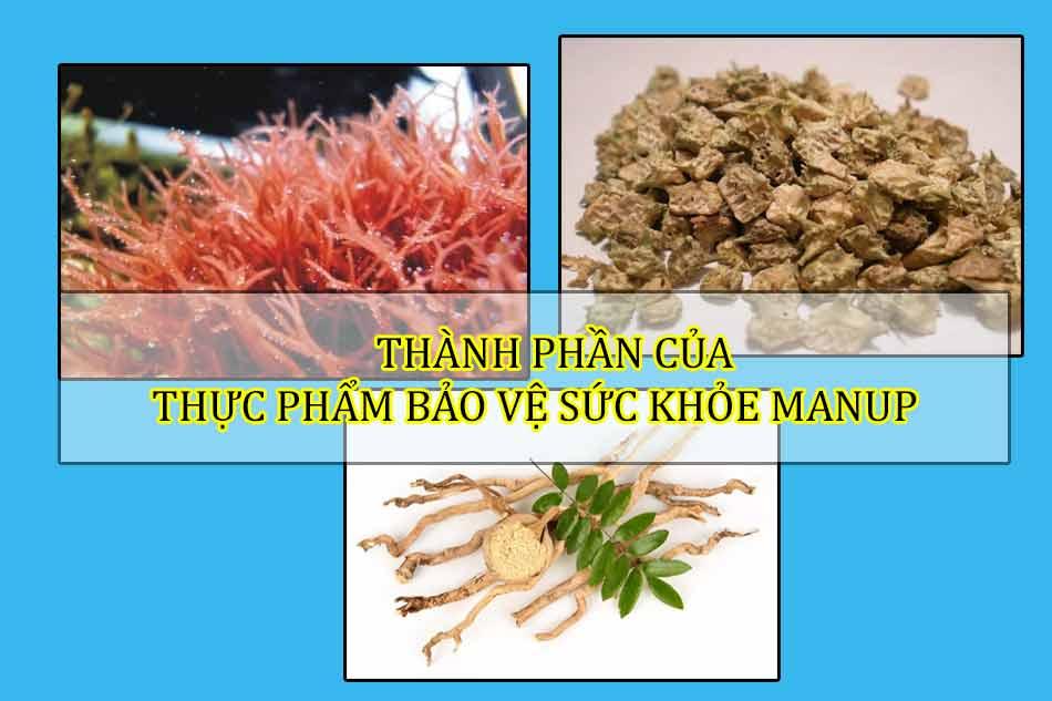 Thành phần của thực phẩm bảo vệ sức khỏe Manup