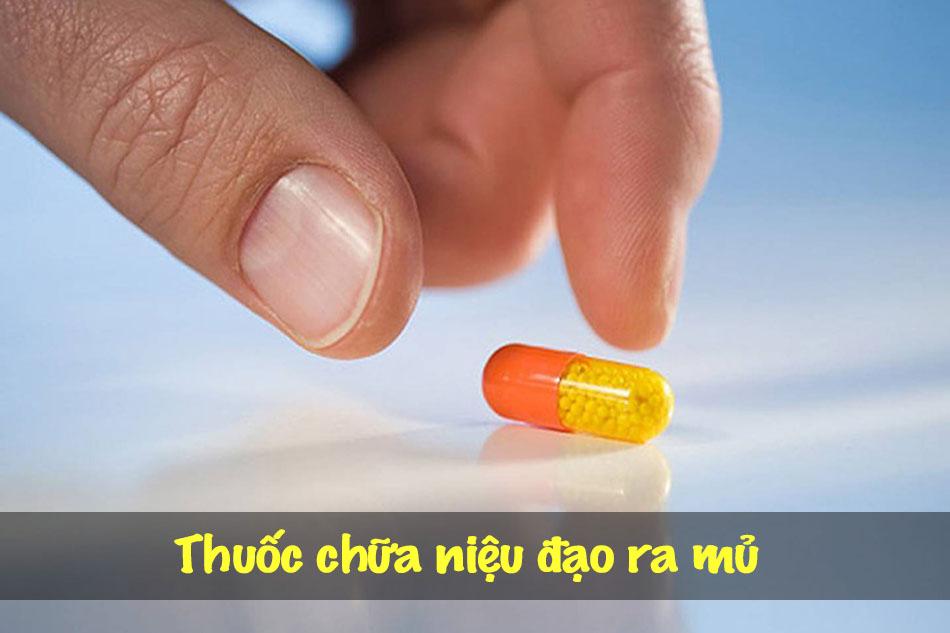 Những thuốc gì chữa niệu đạo ra mủ?